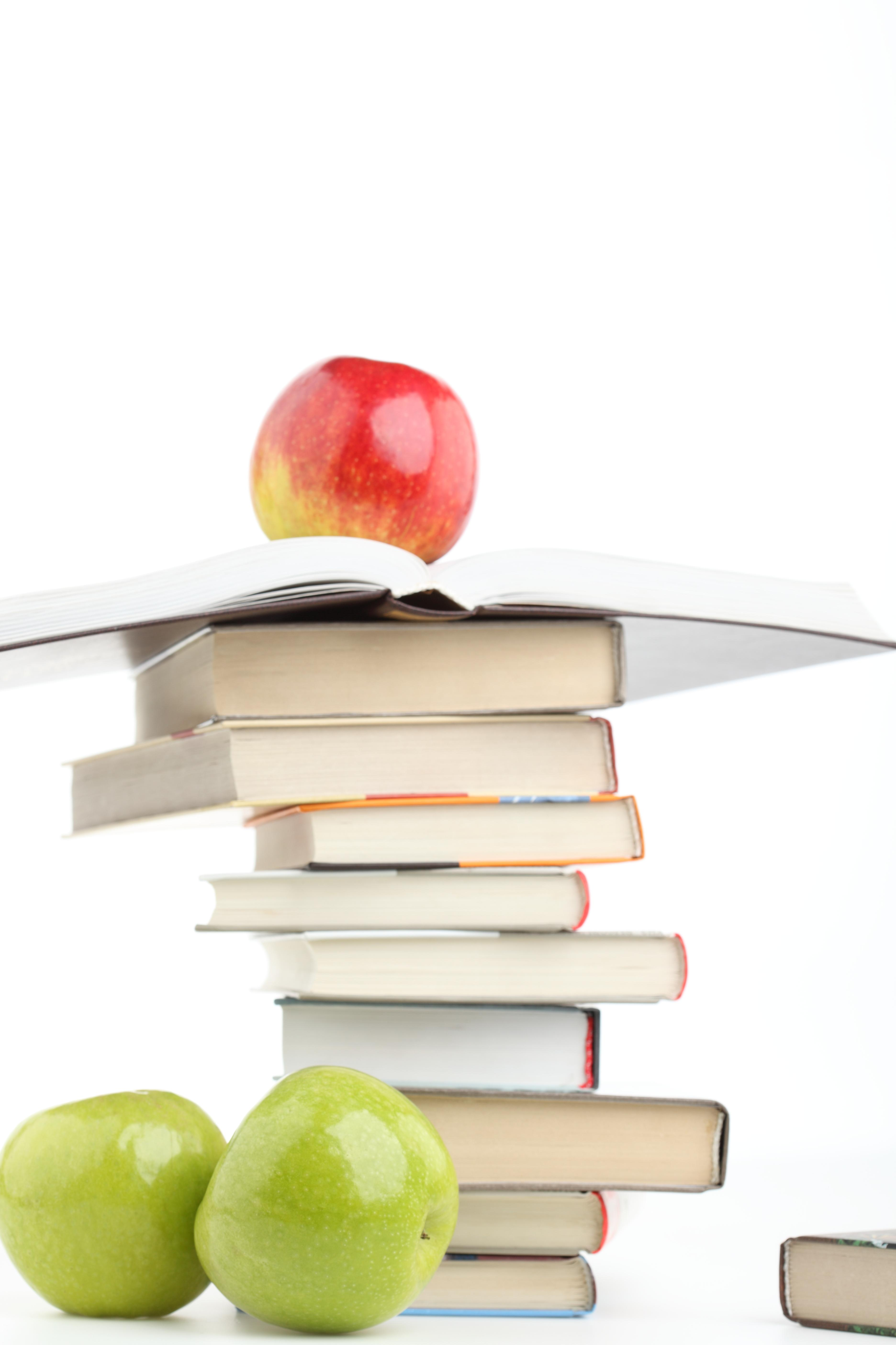 Формируют единую базу диссертаций и дипломных работ Кандидатские  база диссертаций